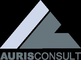 Logo-AurisConsult